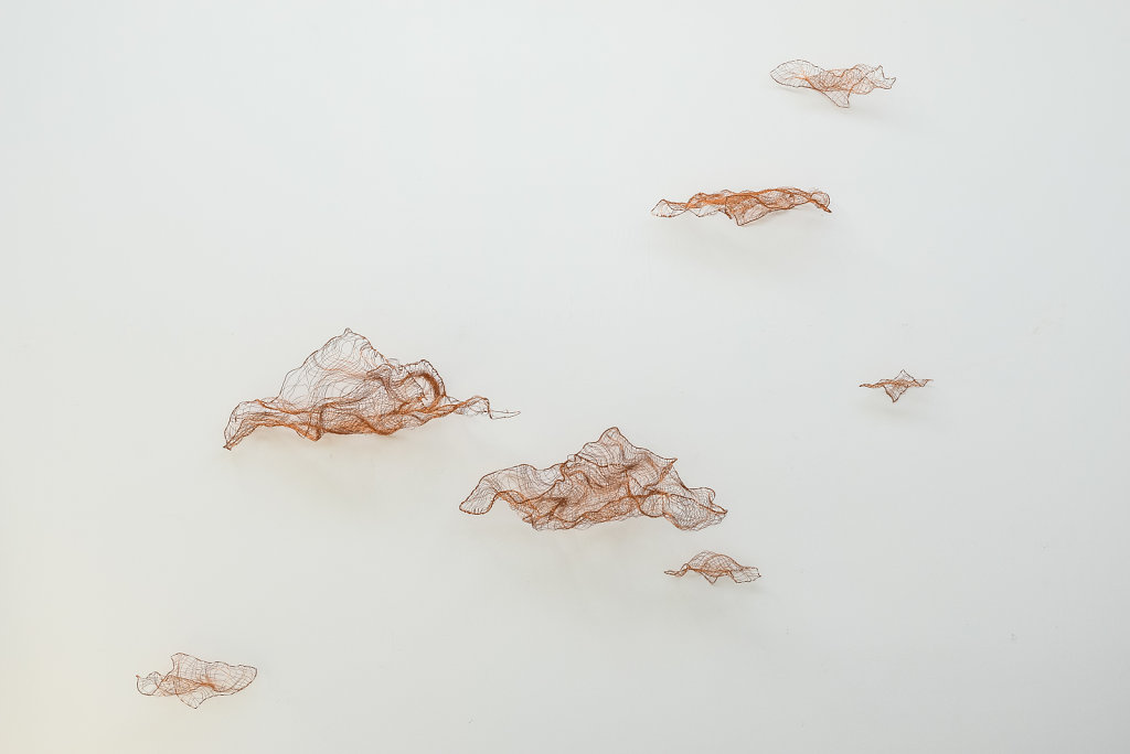 Joanna-Skurska-Flyers-and-Clouds-3-ca-250x350-cm-copper-wire-2016.jpg